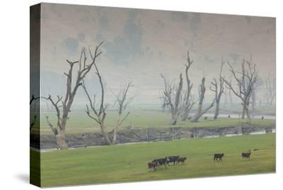 Australia, Victoria, Huon, Lake Hume with Forest Fire Smoke