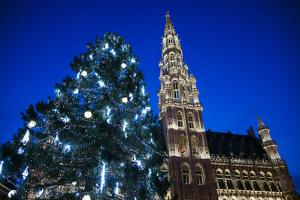 Belgium, Brussels. Grand Place, Holiday lights with a Christmas tree by Walter Bibikow