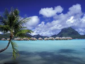 Bora Bora Nui Resort bungalows, Moto Toopua, French Polynesia by Walter Bibikow