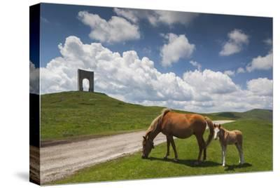 Bulgaria, Central Mts, Troyan, Troyan Pass, Battle Monument and Horses