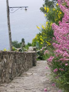 Castle Walkway of 15th Century Castello Aragonese, Ischia, Campania, Italy by Walter Bibikow