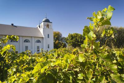 Chapel Creek Winery, El Reno, Oklahoma, USA
