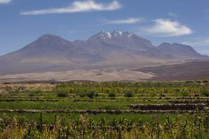 Chile, Atacama Desert, Socaire, Mountains and Fields by Walter Bibikow