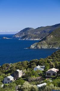 Coastal View of Pino, Le Cap Corse, Corsica, France by Walter Bibikow