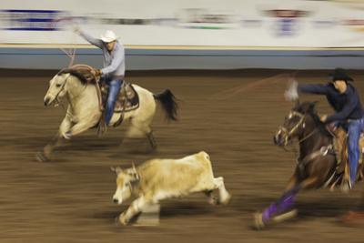 Cowboy Rodeo Competition, Oklahoma City, Oklahoma, USA