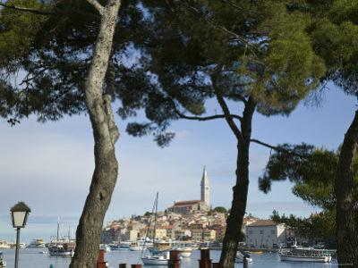 Croatia, Istria, Rovinj, Harbour and Cathedral of St. Euphemia by Walter Bibikow