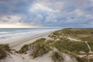 Denmark, Jutland, Danish Riviera, Hvide Sande, Coastal Dunes, Dusk by Walter Bibikow