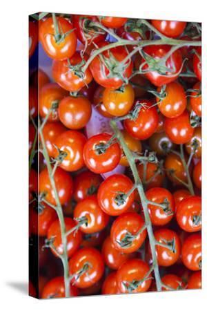 Denmark, Zealand, Copenhagen, Torvehallerne Kph, Tomatoes