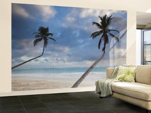 Dominican Republic, Punta Cana Region, Bavaro, Bavaro Beach Palms by Walter Bibikow