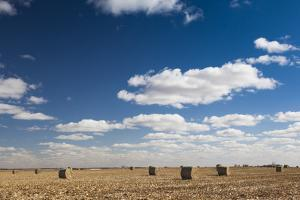 Farm Field, Sioux Falls, South Dakota, USA by Walter Bibikow