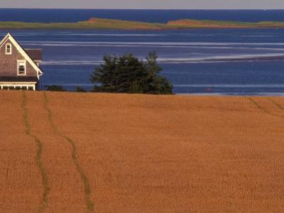 Farmhouse on Prince Edward Island, Canada by Walter Bibikow