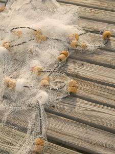 Fishing Nets on Town Pier, Loyalist Cays, Abacos, Bahamas by Walter Bibikow