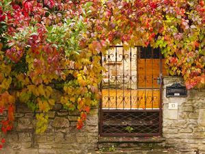 France, Midi-Pyrenees Region, Tarn Department, Cordes-Sur-Ciel, Gate with Autumn Foliage by Walter Bibikow