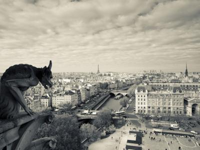 France, Paris, View from the Cathedrale Notre Dame Cathedral with Gargoyles