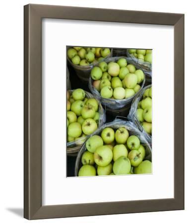 Fresh Apples, Beulah, Lake Michigan Shore, Michigan, USA