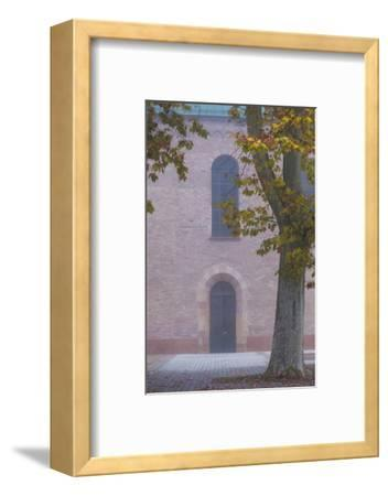 Germany, Rheinland-Pfalz, Speyer, Domgarten, Cathedral Park, Fog