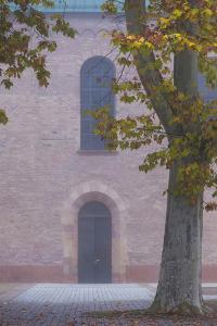 Germany, Rheinland-Pfalz, Speyer, Domgarten, Cathedral Park, Fog by Walter Bibikow