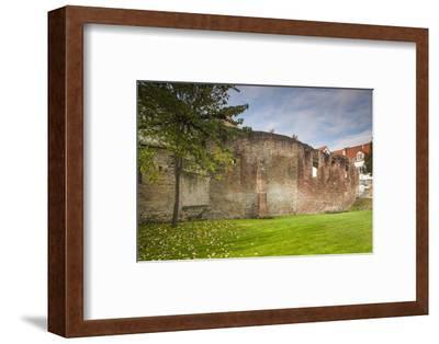 Germany, Speyer, Judenhof, Jewish Courtyard, Ancient Synagogue Wall