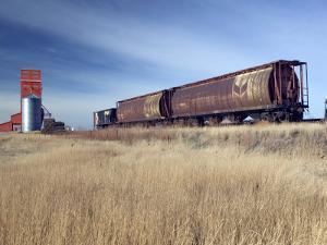 Grain Elevators and Wheat Train, Saskatchewan, Canada by Walter Bibikow
