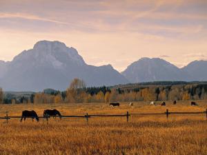 Jackson, Teton Range, Wyoming, USA by Walter Bibikow