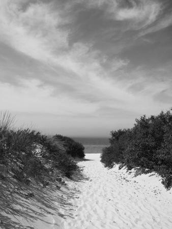 Beautiful Beach Landscapes Black And White Photography Artwork For