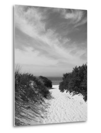 Lambert's Cove Beach, North Tisbury, Martha's Vineyard, Massachusetts, USA