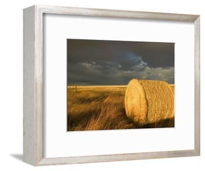 Landscape and Hay Roll in Alberta, Canada
