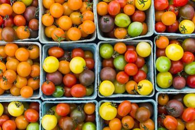 Maine, Rockland, Cherry Tomatoes at Farmers Market