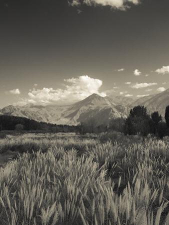 Mendoza Province, Uspallata, Andes Mountains and Rio Mendoza River, Argentina by Walter Bibikow