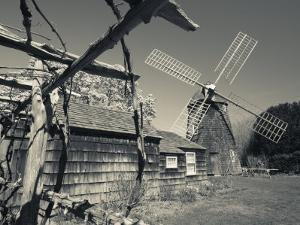 New York, Long Island, the Hamptons, East Hampton, Mulford Farmstead, Water Mill, USA by Walter Bibikow