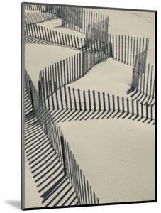 New York, Long Island, the Hamptons, Westhampton Beach, Beach Erosion Fence, USA by Walter Bibikow