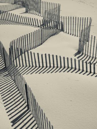 New York, Long Island, the Hamptons, Westhampton Beach, Beach Erosion Fence, USA
