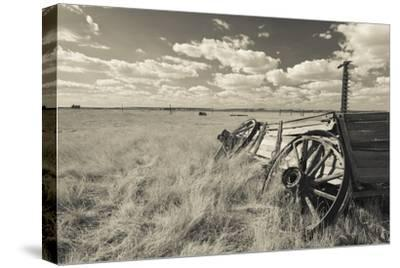 Old Wagon, Prairie Homestead, Cactus Flat, South Dakota, USA