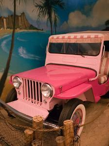Pink Jeep, Elvis Presley Automobile Collection Museum, Memphis, Tennessee, USA by Walter Bibikow