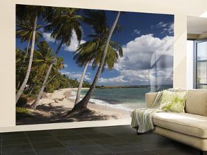 Playa El Frances Beach, El Frances, Samana Peninsula, Dominican Republic by Walter Bibikow