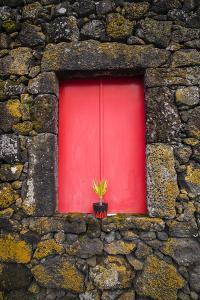 Portugal, Azores, Pico Island, Madalena. Red doors on barn by Walter Bibikow