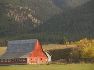 Red Barn in Fall, British Columbia, Canada by Walter Bibikow
