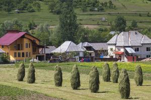 Romania, Maramures Region, Rona de Jos, Village View with Haystacks by Walter Bibikow