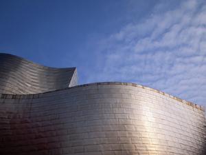 Spider Sculpture, the Guggenheim Museum, Bilbao, Spain by Walter Bibikow