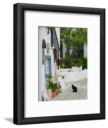 Street View with Black Cat, Manolates, Samos, Aegean Islands, Greece