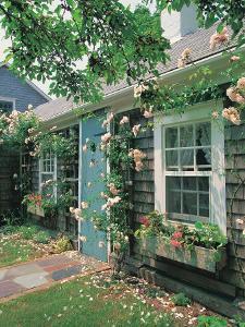 Summer Flower, Doorway, Nantucket, MA by Walter Bibikow