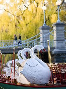 Swanboats, Public Garden, Boston, Massachusetts, USA by Walter Bibikow