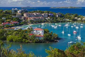 U.S. Virgin Islands, St. John. Cruz Bay, elevated town view with The Battery by Walter Bibikow