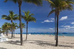USA, Florida, Fort Lauderdale, Fort Lauderdale Beach by Walter Bibikow