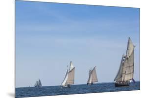 USA, Massachusetts, Cape Ann, Gloucester. Gloucester Schooner Festival, schooner parade of sail. by Walter Bibikow