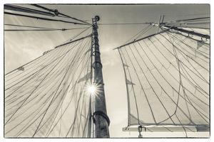 USA, Massachusetts, Cape Ann, Gloucester. Gloucester Schooner Festival, schooner sails by Walter Bibikow