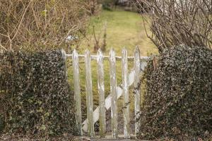 USA, Massachusetts, Cape Cod, Provincetown. Gate in winter by Walter Bibikow