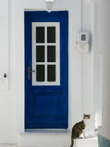 Village Door with Cat, Kokkari, Samos, Aegean Islands, Greece by Walter Bibikow