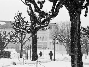 Winter, Mirabellgarten, Salzburg, Austria by Walter Bibikow