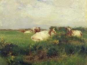 Cows in Field, 1895 by Walter Frederick Osborne